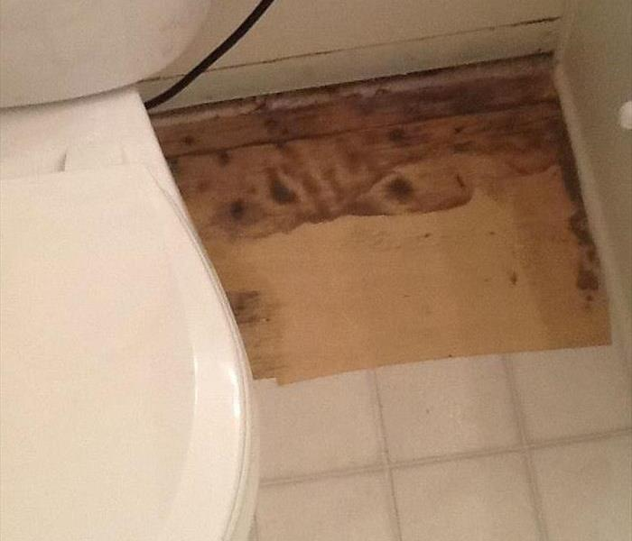 Mold remediation from water damage in bathroom After