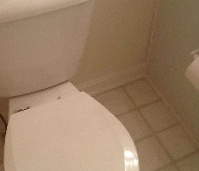 Mold remediation from water damage in bathroom Before