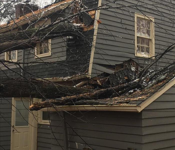 Residential two story home with dark siding suffered damage from fallen trees